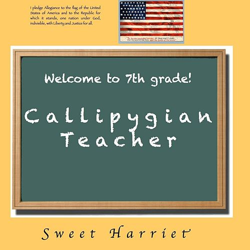 Callipygian Teacher by Sweet Harriet