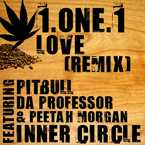1.One.1 Love Remix (feat. Da Professor, Pitbull & Peetah Morgan) - Single von Inner Circle