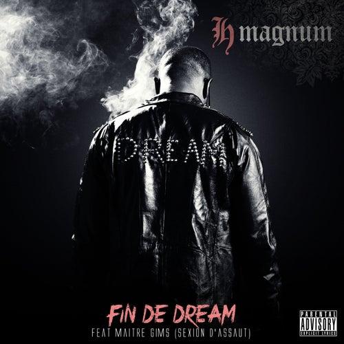 Fin de Dream de H Magnum