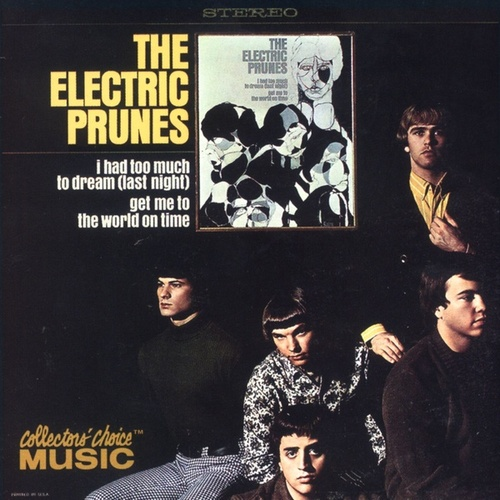 I Had Too Much To Dream by The Electric Prunes