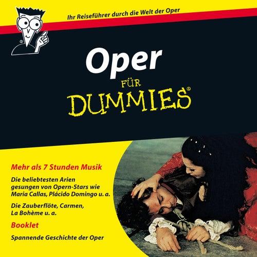 Oper für Dummies von Various Artists