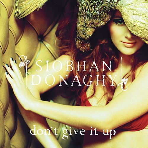 Don't Give It Up de Siobhan Donaghy
