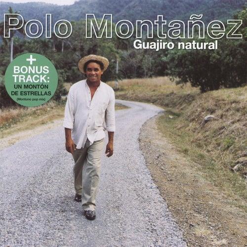 Guajiro Natural de Polo Montañez