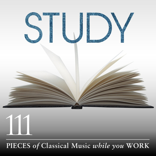 Study: 111 Pieces Of Classical Music While You Work di Various Artists
