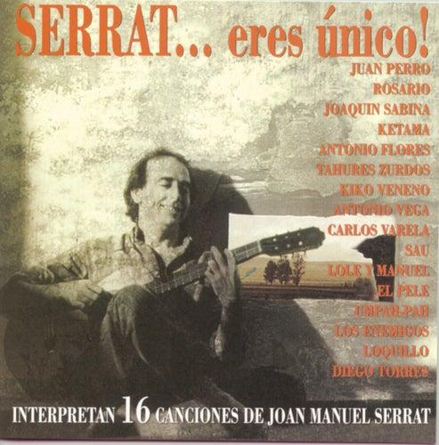 Serrat... Eres Unico de Various Artists