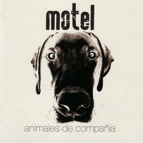 Animales de Compañía de Motel