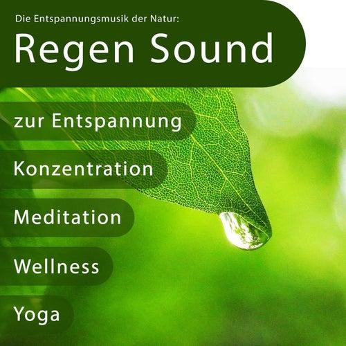 Die Entspannungsmusik Der Natur: Regen Sound Zur Entspannung, Konzentration, Meditation, Wellness, Y von Entspannungsmusik
