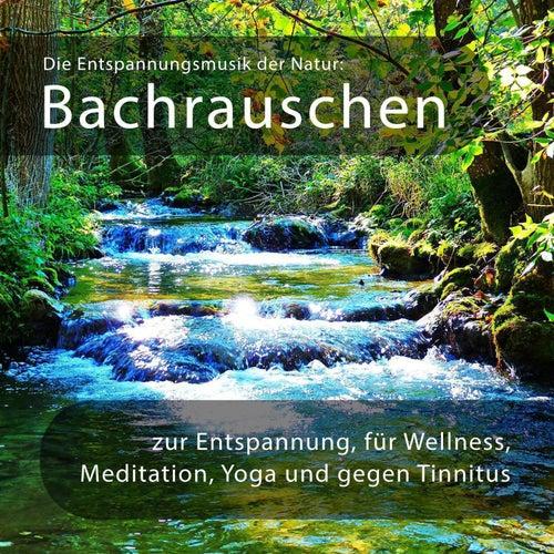 Die Entspannungsmusik der Natur: Bachrauschen zur Entspannung, für Wellness, Meditation, Yoga, gegen von Entspannungsmusik