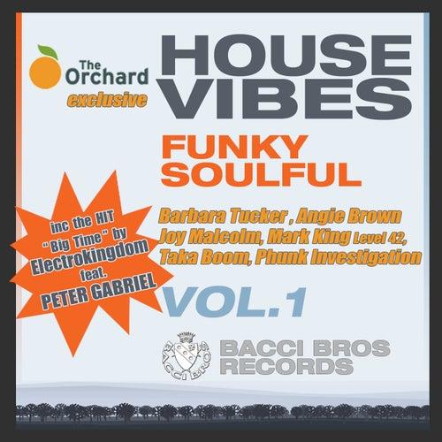 House Vibes Funky Soulful Vol. 1 van Various Artists