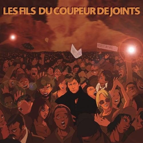Les Fils Du Coupeur De Joints de Various Artists