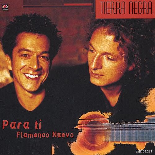 Para Ti - Flamenco Nuevo by Tierra Negra