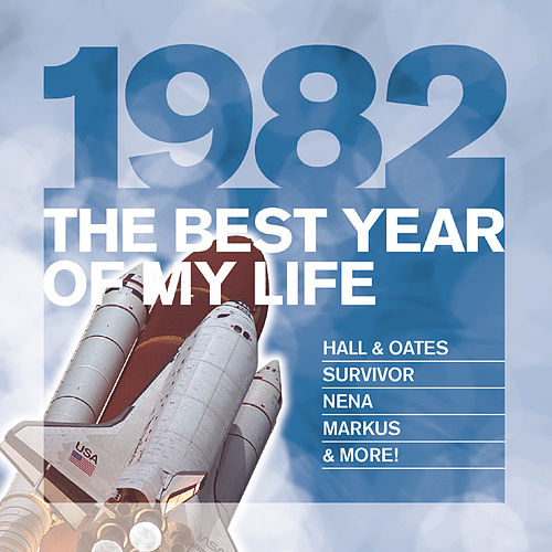 The Best Year Of My Life: 1982 von Various Artists