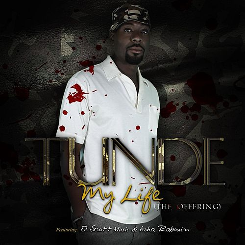 My Life (The Offering) [feat. D. Scott & Asha Rabouin] by Tunde