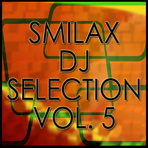 Smilax Dj Selection Vol. 5 by Various Artists