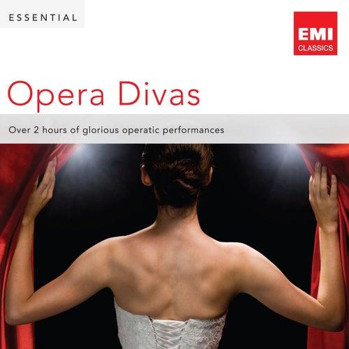 Essential Opera Divas von Various Artists