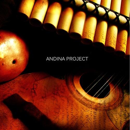 Adn Proyecto Andino (From Putumayo to Rio De La Plata) von Andina Project