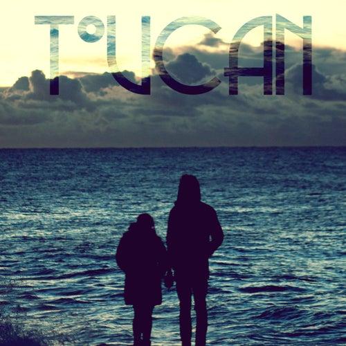 Swim de Toucan