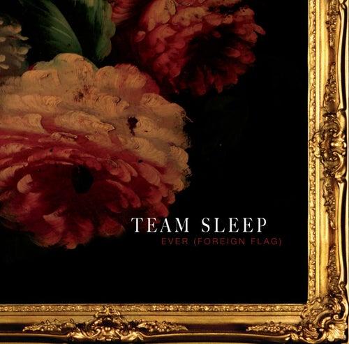Ever de Team Sleep