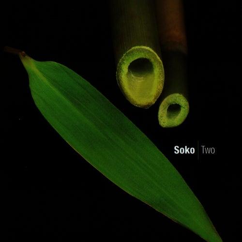 Two von Soko