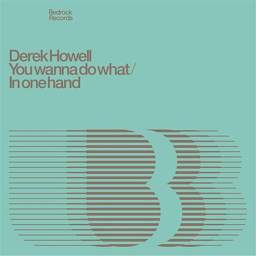 You Wanna Do What / In One Hand de Derek Howell