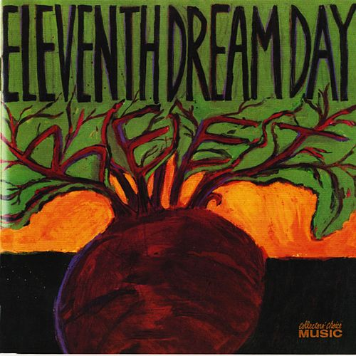 Beet by Eleventh Dream Day