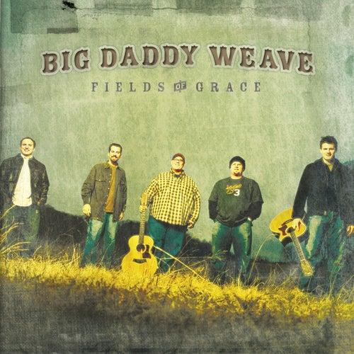 Fields Of Grace van Big Daddy Weave