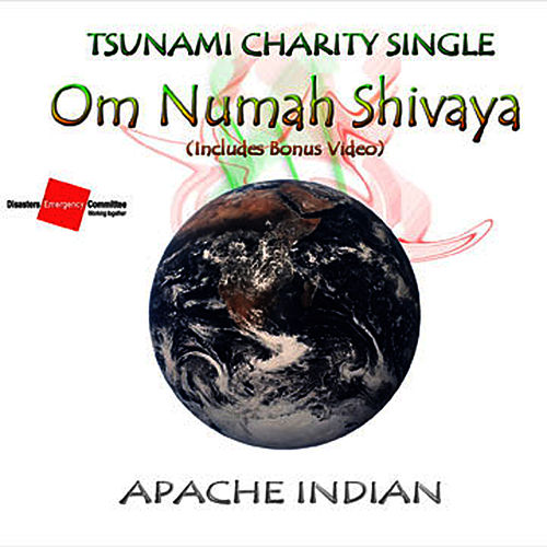 Om Numah Shivaya de Apache Indian