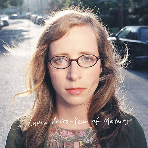 Year of Meteors de Laura Veirs