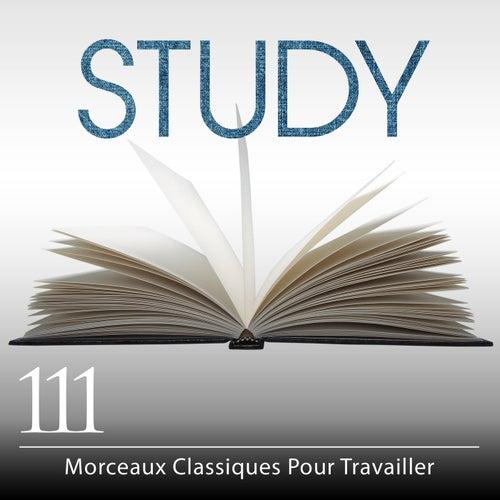 Study: 111 Morceaux Classiques Pour Travailler (French) de Various Artists
