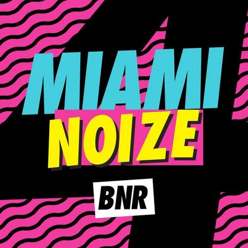 Miami Noize 4 de Various Artists