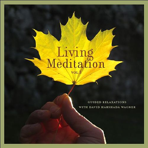 Living Meditation Vol. 3: Guided Relaxations With David Harshada Wagner von Music For Meditation