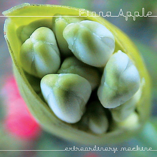 Extraordinary Machine fra Fiona Apple