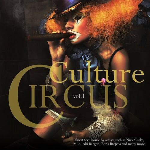 Culture Circus Vol.1 von Various Artists