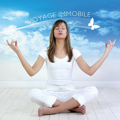 Voyage Immobile by Various Artists