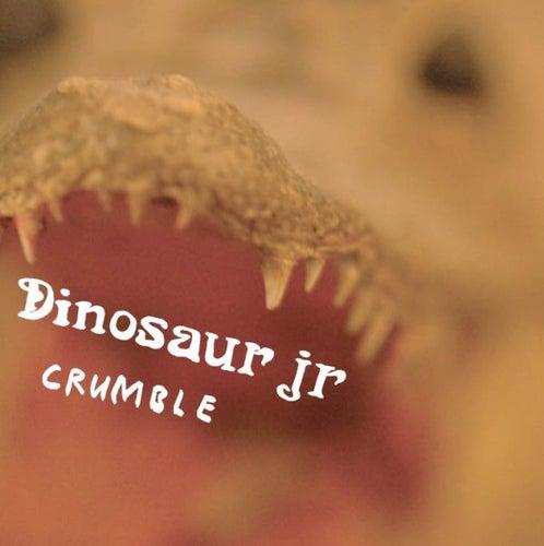 Crumble von Dinosaur Jr.