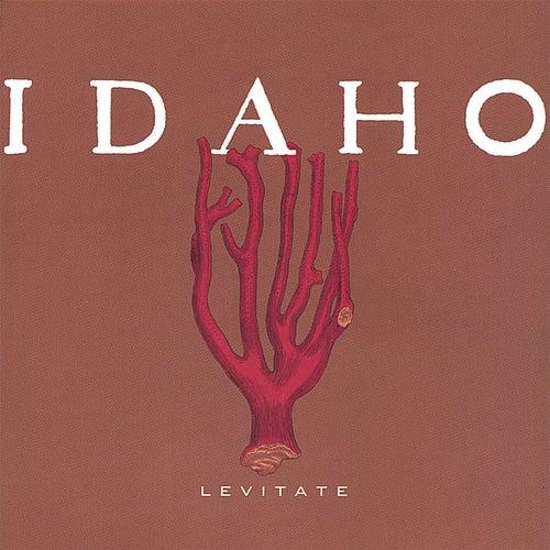 Levitate by Idaho
