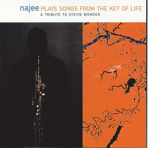 Songs From The Key Of Life: A Tribute To Stevie Wonder by Najee