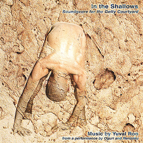 In the Shallows de Yuval Ron