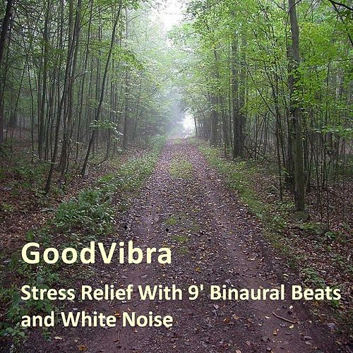 Stress Relief With 9' Binaural Beats and White Noise by Goodvibra