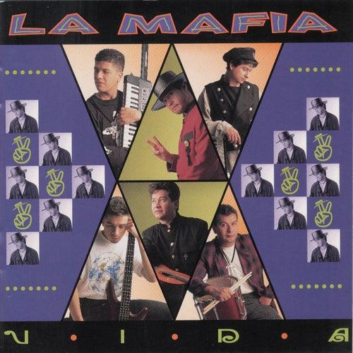 Vida de La Mafia