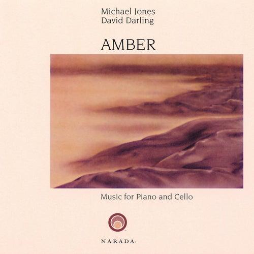 Amber de David Darling