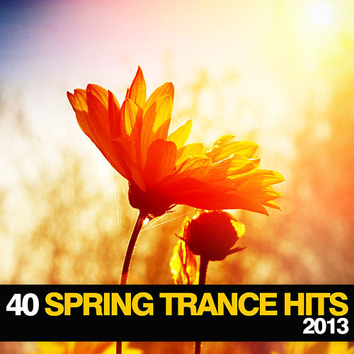 40 Spring Trance Hits 2013 von Various Artists