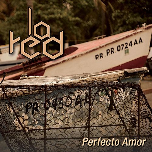 Perfecto Amor von La Red