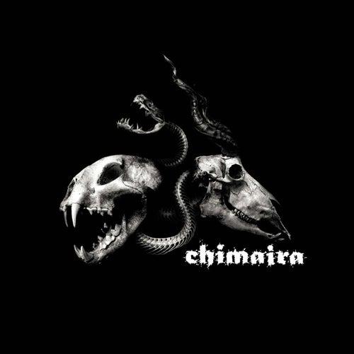 Chimaira Special Edition Bonus Disc de Chimaira