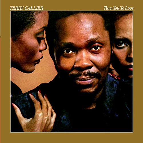 Turn You To Love de Terry Callier