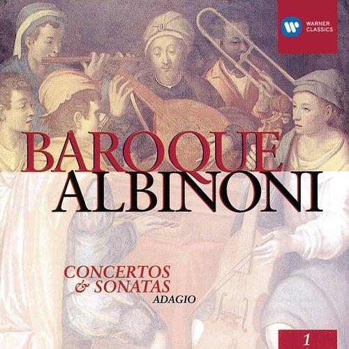 Albinoni: Concertos & Sonatas de Raymond Leppard
