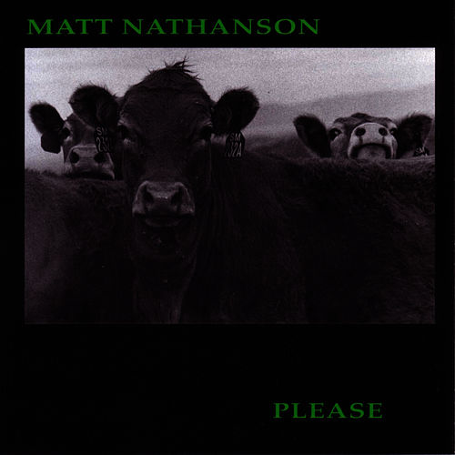 Please de Matt Nathanson