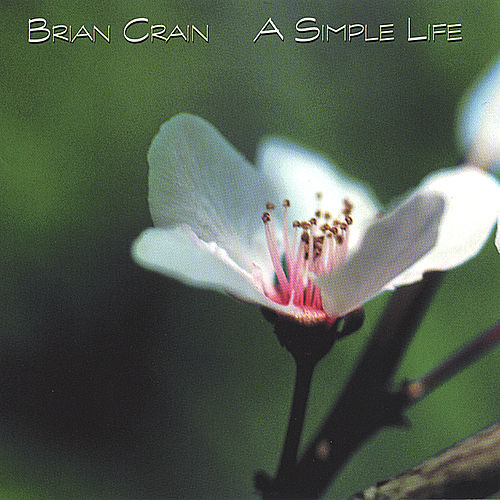 A Simple Life von Brian Crain