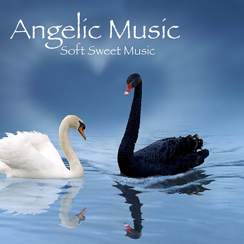 Whate Dove (Meditation Music) by Angelic Music Academy : Napster
