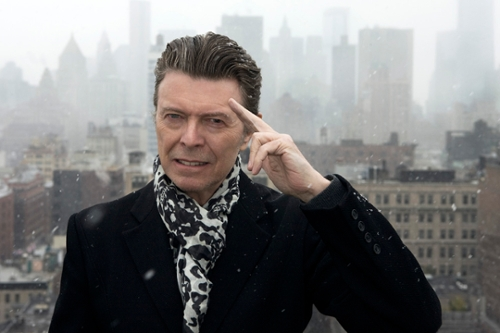 Spotlight: David Bowie